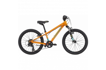 "CANNONDALE 20"" TRAIL"